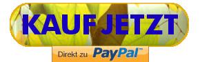 Sicher mit PayPal kaufen