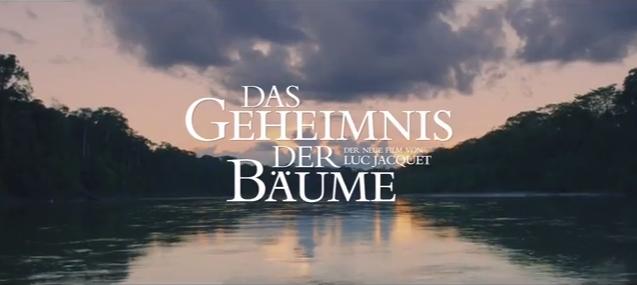 das-geheimnis-der-baeume_02
