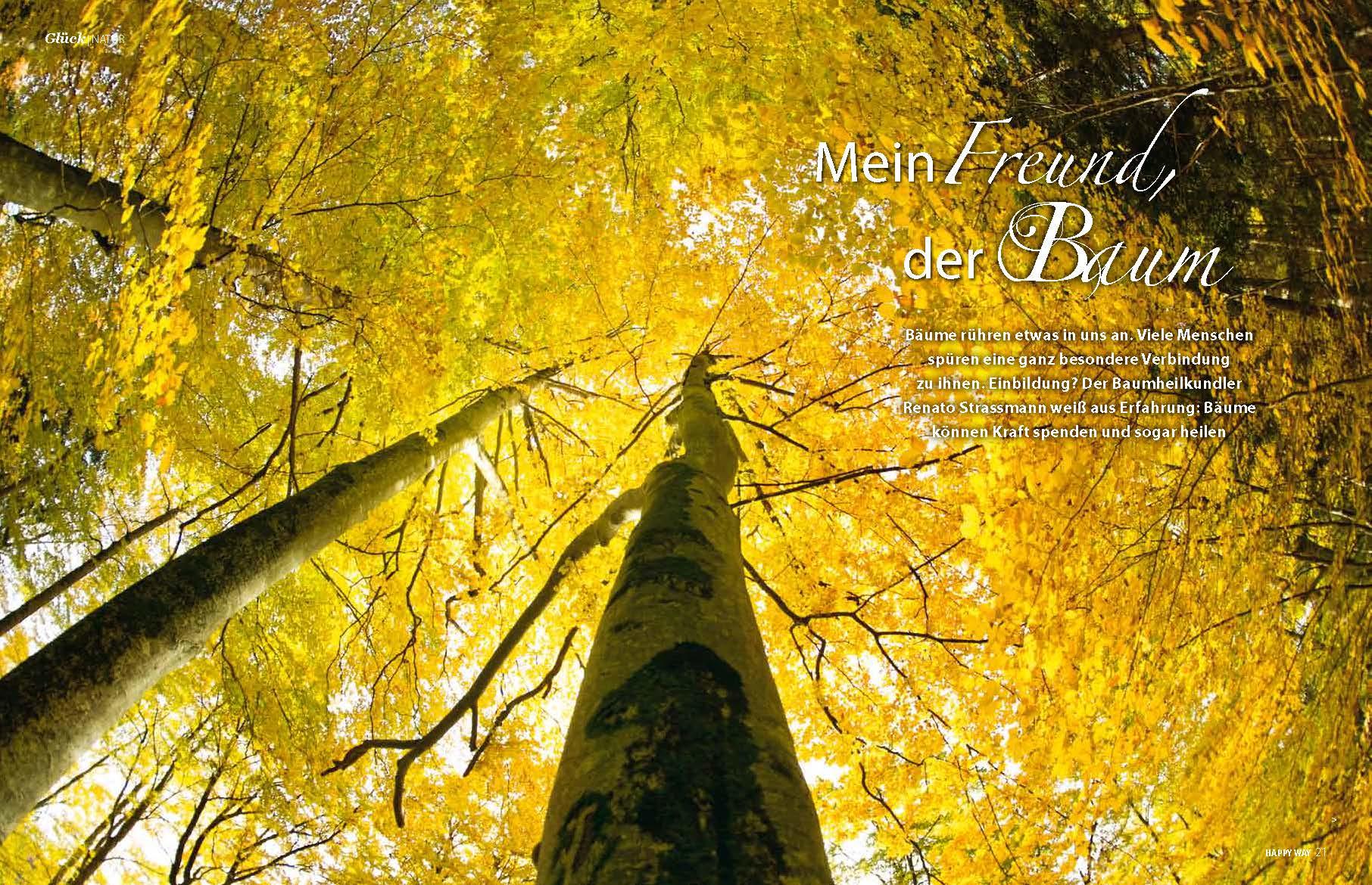 Mein_Freund_der_Baum_der_Artikel_Happy_Way_Seite_1