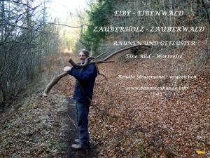 Eibenholz-Weg-01_ros