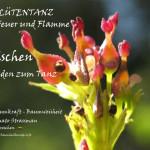 Eschen_laden_zum_Tanz_weg